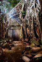 Amalgamation of Nature and the Temple of Ta Prohm