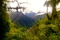 lookout, cloud forest, Inca Trail, Peru