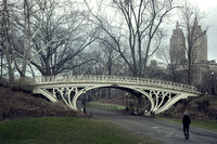 The Gothic Bridge in Central Park