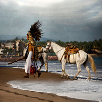 """Indigenous people of Mexico"", ""Mexican Indian"", Mexico, ""Puerto Vallarta"", ""Urban Indians"", beach, feather, horse, ocean"