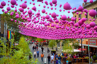 """Pink Balls"" in Montreal Gay Village"